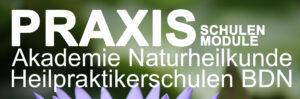 Praxis Schulen Module Akademie Naturheilkunde Heilpraktikerschulen BDN